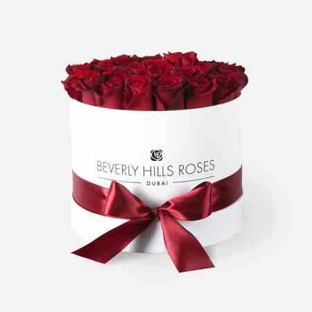 Medium white rose box in Hollywood