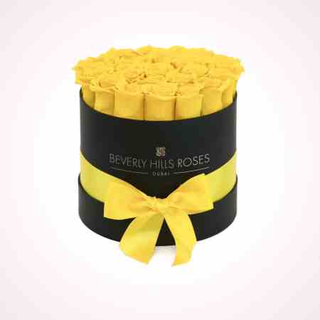 yellow rose box