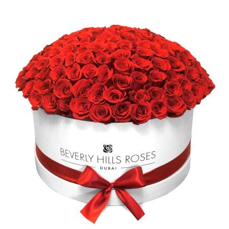 "Large white rose box in "" Hollywood Globe """