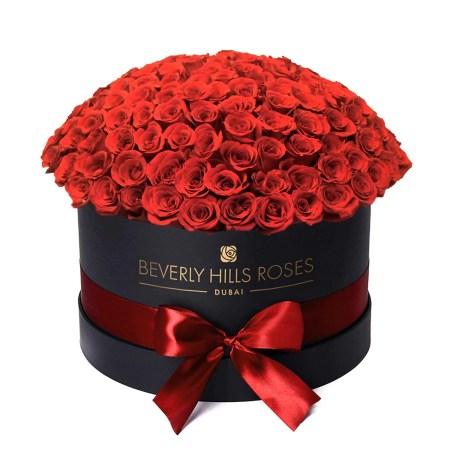 "Large black rose box in "" Hollywood Globe """