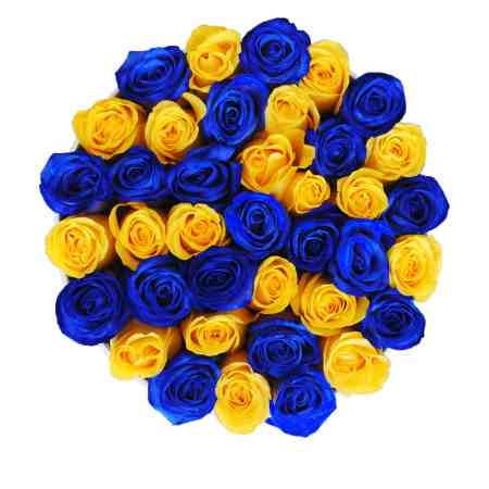 "Blue Roses for Delivery ""Sunny Lagoon"" in Medium White Rose Box"