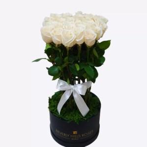 Premium long stem White rose bouquet in a box