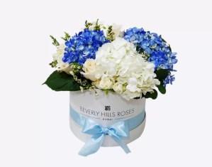 Blue Hydrangea & white Hydrangea in box