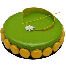 Choco Pistachio Cake for birthday