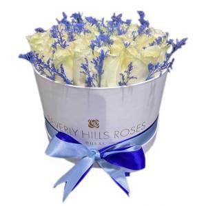 White roses in 'Blue Sparkle'