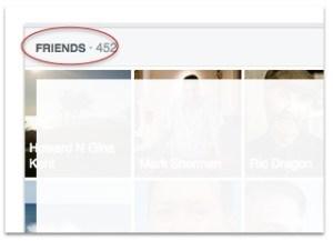 Facebook friends panel