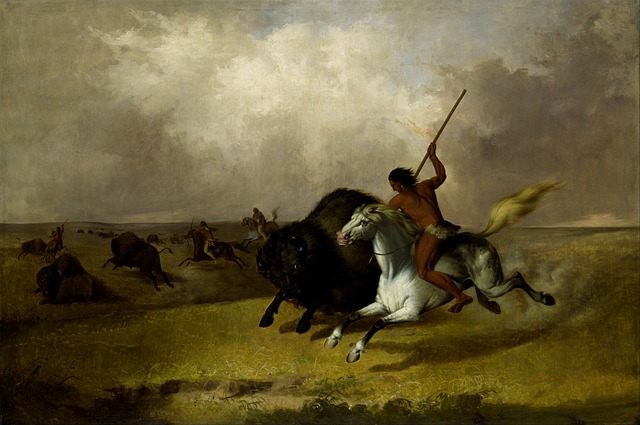 Plains Indian, Buffalo Hunt painting John Stanley