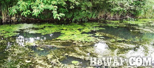 biwako bass fishing guide chouka 11