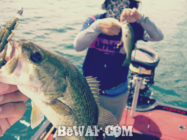 biwako bass fishing guide gekiyasu rental 28