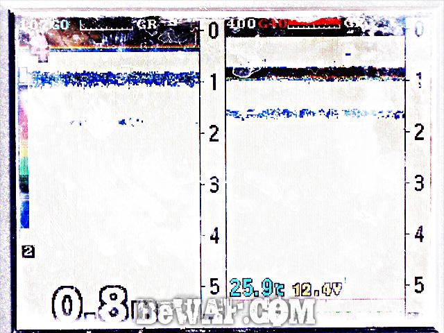 WFG biwako bass fishing guide 17