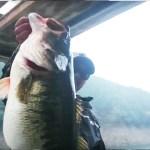 67.5cm!! (6575g/14.5lb) 池原モンスター現わる!! (Y企画) 6