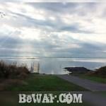 今日の琵琶湖 (by ビワエフ) 11月20日
