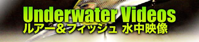 "DSTYLE - Torquee straight ""トルスト""の水中映像 1"
