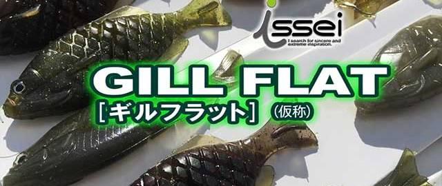 """ギル系フラットベイト """"ギルフラット"""" の紹介!! (一誠) 1"""