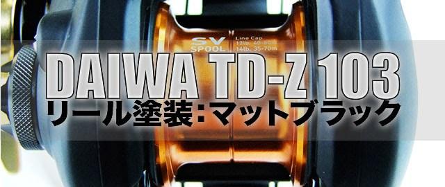td-z 103ml 塗装 30度 写真