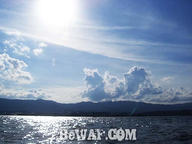 琵琶湖 8月 ベイトフィネス 釣果写真