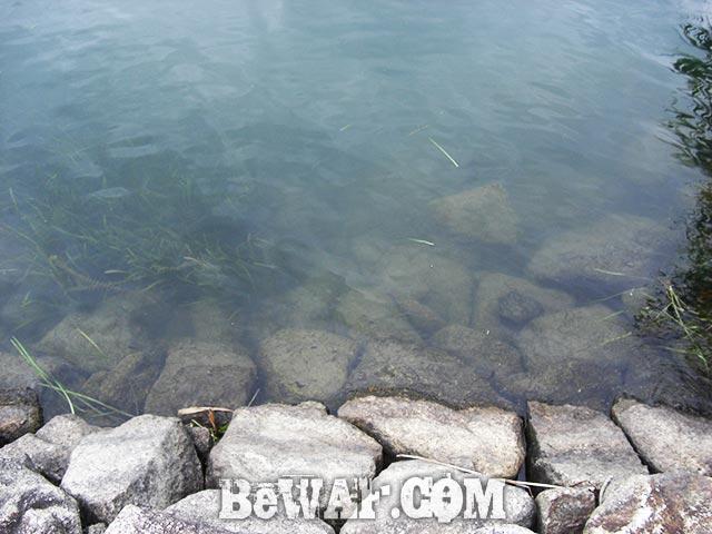 サウザー395 FOR SALE ボート写真