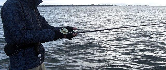冬の釣り琵琶湖 メタル釣果 写真