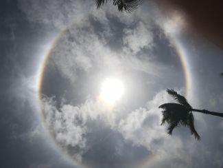 Photograph of semi-eclipse of sun in Jamaica