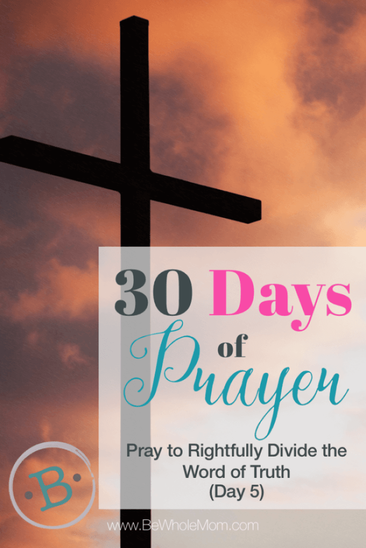 30 Days of Prayer - Pray to Rightfully Divide the Word of Truth (Day 5)