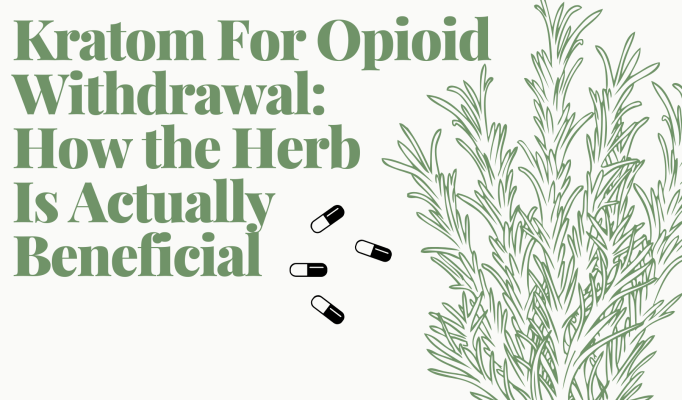 Kratom for Opioid Withdrawal_ How the Herb Is Actually Beneficial