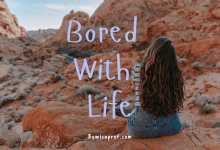Photo of Bored With Life