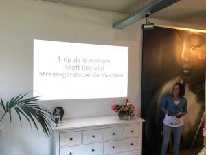 Presentatie Bewust in Balans met Baukje
