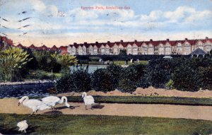 EGE-019 - Egerton Park with swans (Postcard) c1910 pm 17.8.1923