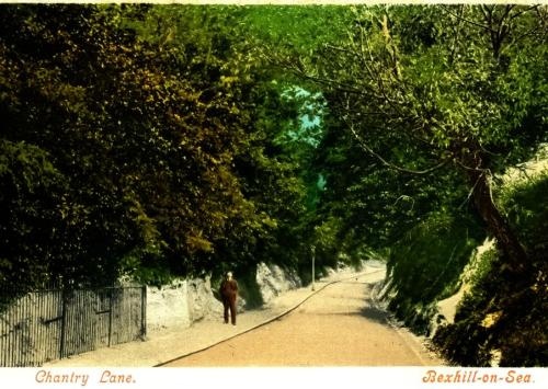 Chantry Lane - c1905