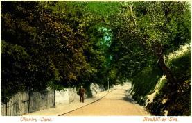 Chantry Lane - c1905