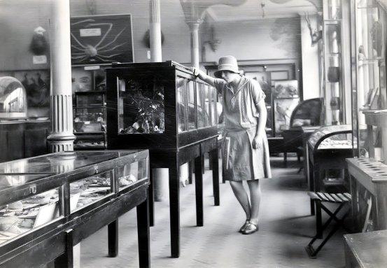 MUS-006 - Museum interior c1927
