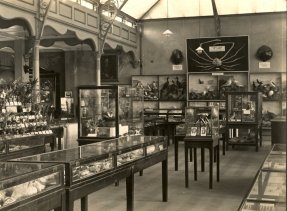 MUS-007 - Museum Interior (West) 1927