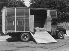 HO-017 - Beeney cattle lorry