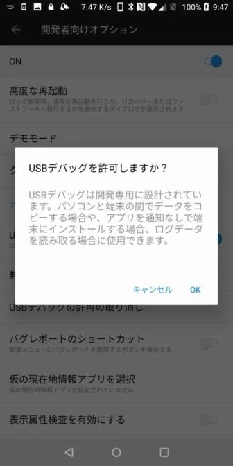 開発者向けオプション USBデバッグ