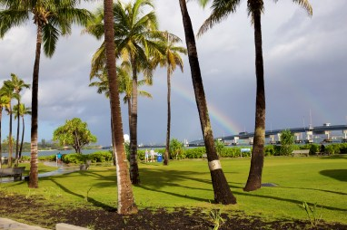 More of our rainbow