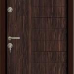 Usa Star Doors – Seria Rustic – Model SE-007