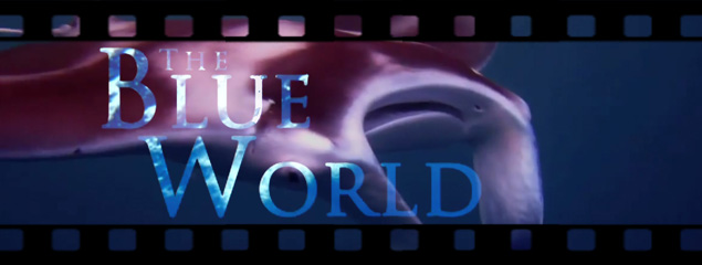 The Blue World – Embudu