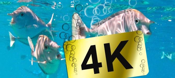 Filmen in 4K – schon sinnvoll oder nicht?