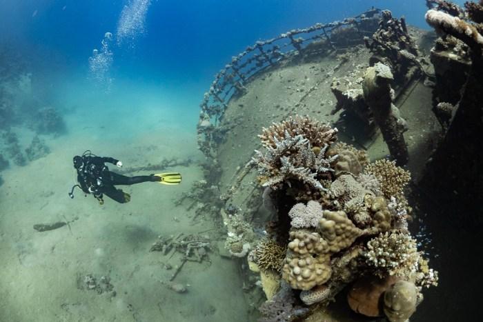 Weitwinkel unter Wasser - Fisheye - viel aufs Bild bekommen