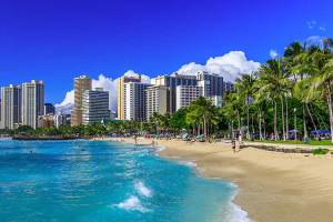 If you're looking for a certain personality type or fit, we've got some Honolulu dating sites for you.