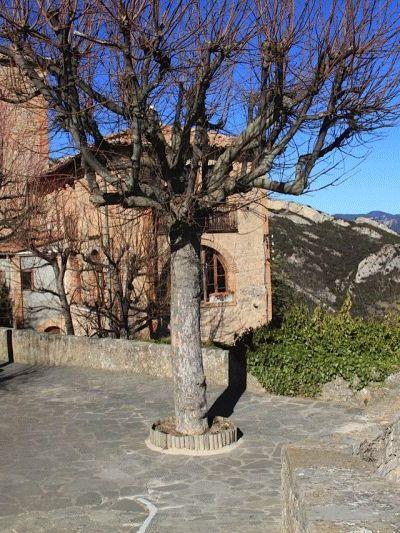 SANT01-Queralt 2 (Jordi Valls)