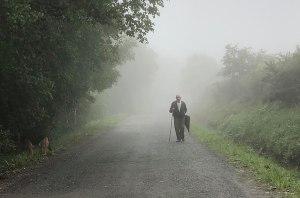 Journey Mist
