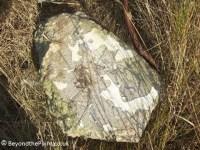 Concrete Rock with Paint