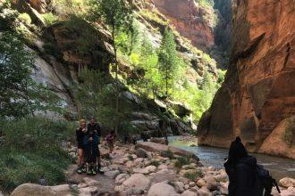hiking the narrow at zion