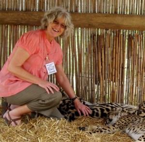 petting cheetah south africa