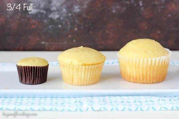 Cupcake Research- Tips For Bakers!