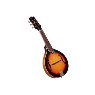 Mandolin hybrid instruments