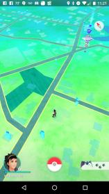 Pokemon_in_blue_hill
