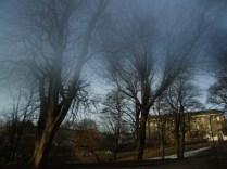 light_mist