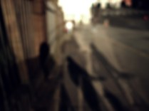 shadows_lead_17